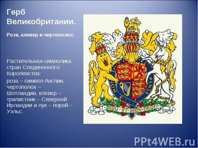 Растительная символика стран Соединенного Королевства: Растительная символика стран Соединенного Королевства: роза – символ Англии, чертополох – Шотландии, клевер – трилистник – Северной Ирландии и лук – порей – Уэльс.