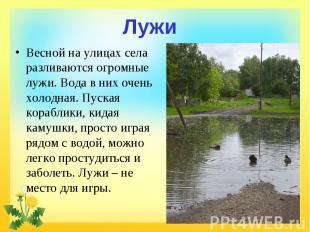 Лужи Весной на улицах села разливаются огромные лужи. Вода в них очень холодная.