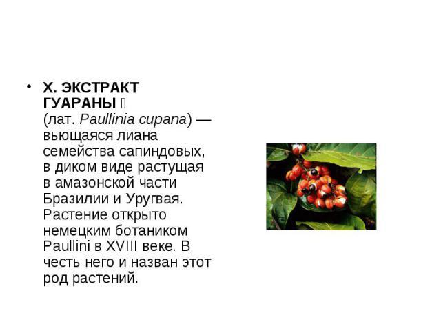 Х. ЭКСТРАКТ ГУАРАНЫ (лат.Paullinia cupana) — вьющаяся лиана семейства сапиндовых, в диком виде растущая в амазонской части Бразилии и Уругвая. Растение открыто немецким ботаником Paullini в XVIII веке. В честь него и назван этот род растений.