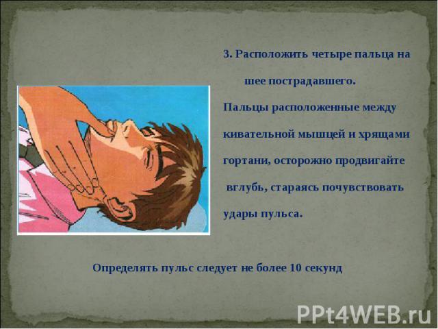 3. Расположить четыре пальца на 3. Расположить четыре пальца на шее пострадавшего. Пальцы расположенные между кивательной мышцей и хрящами гортани, осторожно продвигайте вглубь, стараясь почувствовать удары пульса.