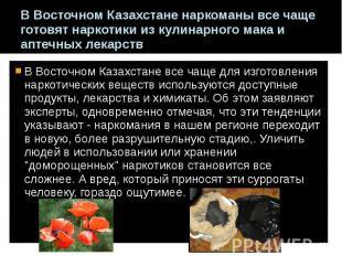 В Восточном Казахстане наркоманы все чаще готовят наркотики из кулинарного мака