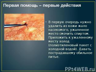 В первую очередь нужно удалить из кожи жало насекомого, ужаленное место смочить