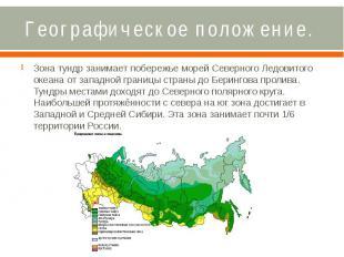 Географическое положение. Зона тундр занимает побережье морей Северного Ледовито