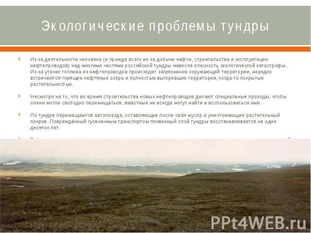 Экологические проблемы тундры Из-за деятельности человека (и прежде всего из-за добычи нефти, строительства и эксплуатации нефтепроводов) над многими частями российской тундры нависла опасность экологической катастрофы. Из-за утечек топлива из нефте…