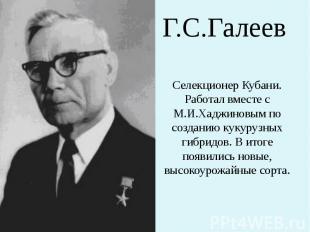 Г.С.Галеев Селекционер Кубани. Работал вместе с М.И.Хаджиновым по созданию кукур