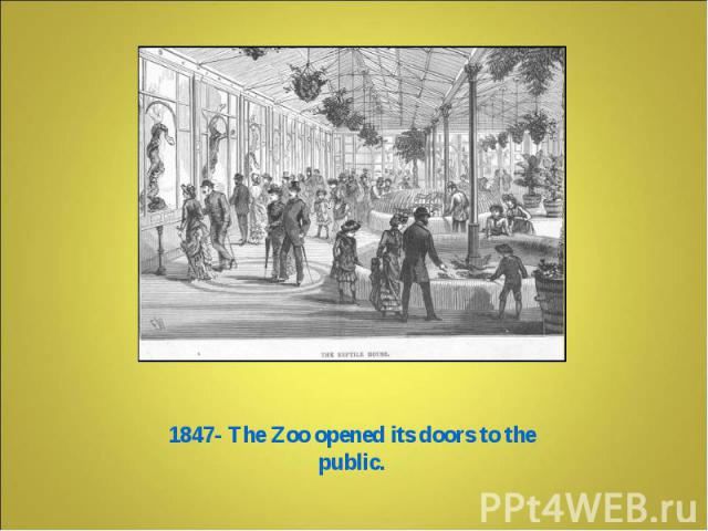 1847- The Zoo opened its doors to the public.