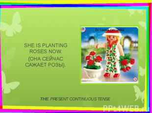 THE PRESENT CONTINUOUS TENSE SHE IS PLANTING ROSES NOW. (ОНА СЕЙЧАС САЖАЕТ РОЗЫ)