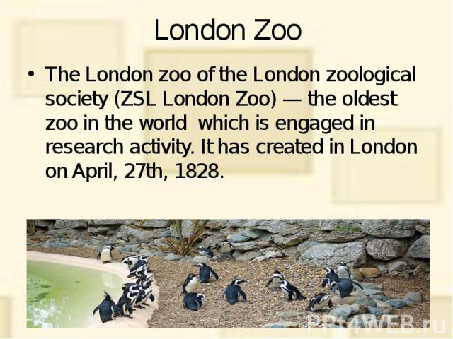 London Zoo The London zoo of the London zoological society (ZSL London Zoo) — the oldest zoo in the world which is engaged in research activity. It has created in London on April, 27th, 1828. It is located in northern part of Regent's Park (Regent's…
