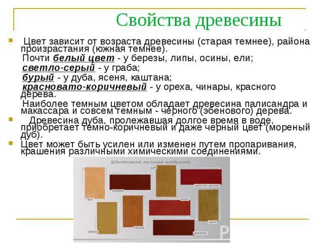Цвет зависит от возраста древесины (старая темнее), района произрастания (южная темнее). Цвет зависит от возраста древесины (старая темнее), района произрастания (южная темнее). Почти белый цвет - у березы, липы, осины, ели; светло-серый - у граба; …