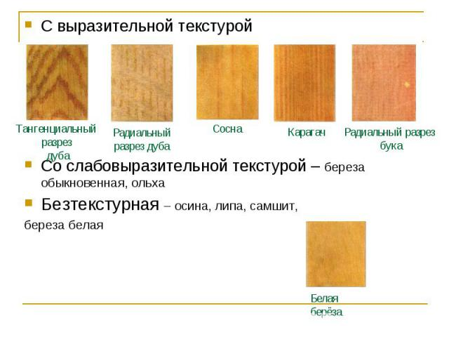 С выразительной текстурой С выразительной текстурой Со слабовыразительной текстурой – береза обыкновенная, ольха Безтекстурная – осина, липа, самшит, береза белая