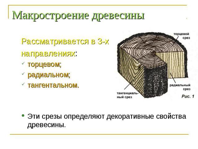 Рассматривается в 3-х Рассматривается в 3-х направлениях: торцевом; радиальном; тангентальном. Эти срезы определяют декоративные свойства древесины.