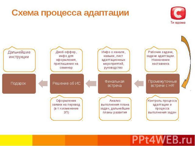 Схема процесса адаптации