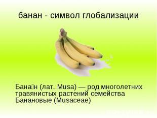 банан - символ глобализации Бана н (лат. Musa) — род многолетних травянистых рас
