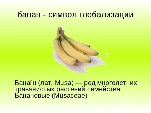 банан - символ глобализации Бана н (лат. Musa) — род многолетних травянистых растений семейства Банановые (Musaceae)