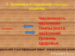 3. Экономика и социальная структура общества Экономика