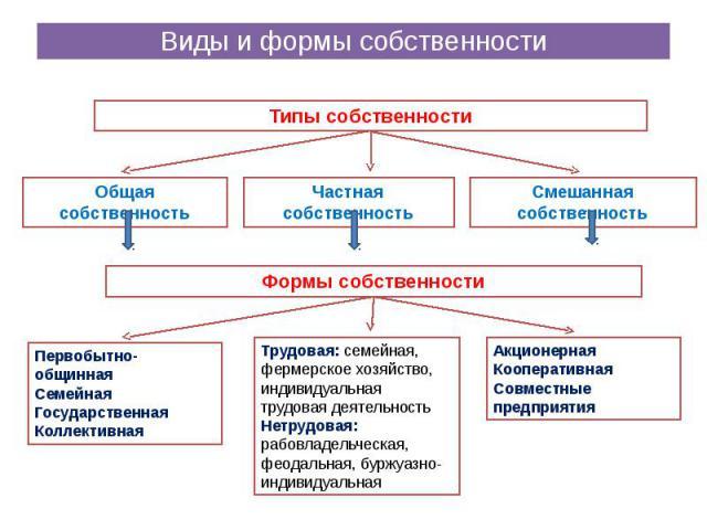 Виды и формы собственности
