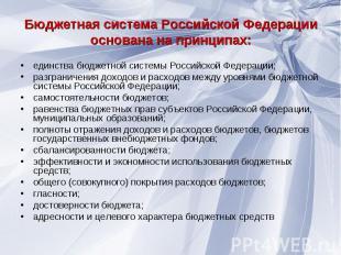единства бюджетной системы Российской Федерации; единства бюджетной системы Росс