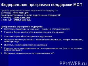 Средства федерального бюджета, выделенные на поддержку МП в 2008 году – 4500, 0