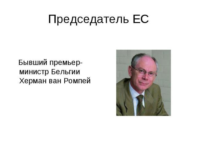 Бывший премьер-министр Бельгии Херман ван Ромпей