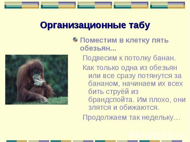 Поместим в клетку пять обезьян... Поместим в клетку пять обезьян... Подвесим к потолку банан. Как только одна из обезьян или все сразу потянутся за бананом, начинаем их всех бить струёй из брандспойта. Им плохо, они злятся и обижаются. Продолжаем та…