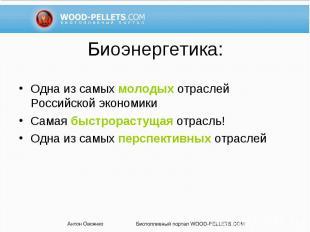 Одна из самых молодых отраслей Российской экономики Одна из самых молодых отрасл