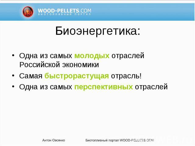 Одна из самых молодых отраслей Российской экономики Одна из самых молодых отраслей Российской экономики Самая быстрорастущая отрасль! Одна из самых перспективных отраслей