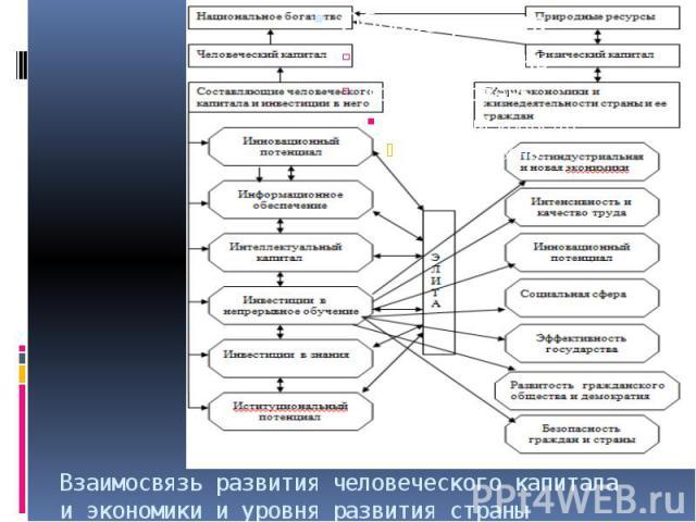 Взаимосвязь развития человеческого капитала и экономики и уровня развития страны
