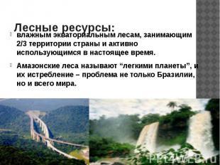 Лесные ресурсы: влажным экваториальным лесам, занимающим 2/3 территории страны и