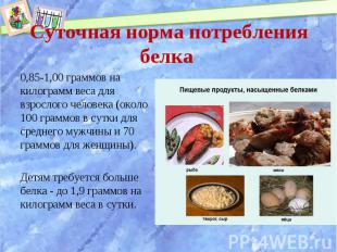0,85-1,00 граммов на килограмм веса для взрослого человека (около 100 граммов в