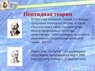 В 1903 году немецкий ученый Э.Г.Фишер предложил пептидную теорию, которая стала