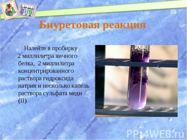 Налейте в пробирку Налейте в пробирку 2 миллилитра яичного белка, 2 миллилитра концентрированного раствора гидроксида натрия и несколько капель раствора сульфата меди (II).