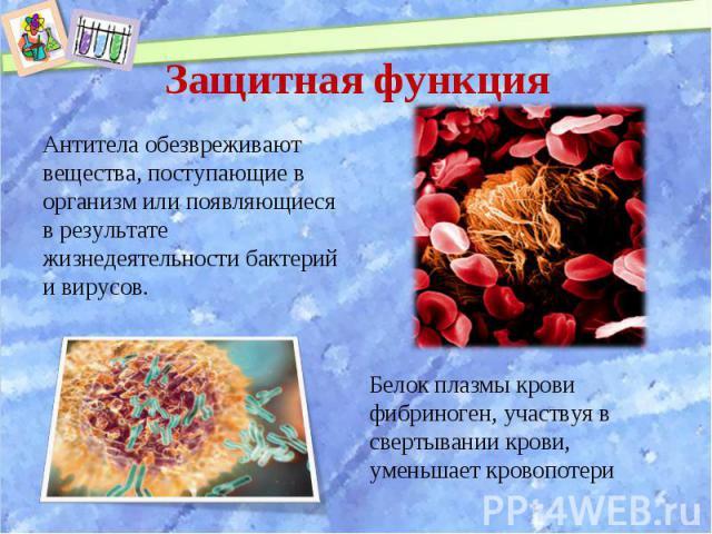 Антитела обезвреживают вещества, поступающие в организм или появляющиеся в результате жизнедеятельности бактерий и вирусов. Антитела обезвреживают вещества, поступающие в организм или появляющиеся в результате жизнедеятельности бактерий и вирусов.