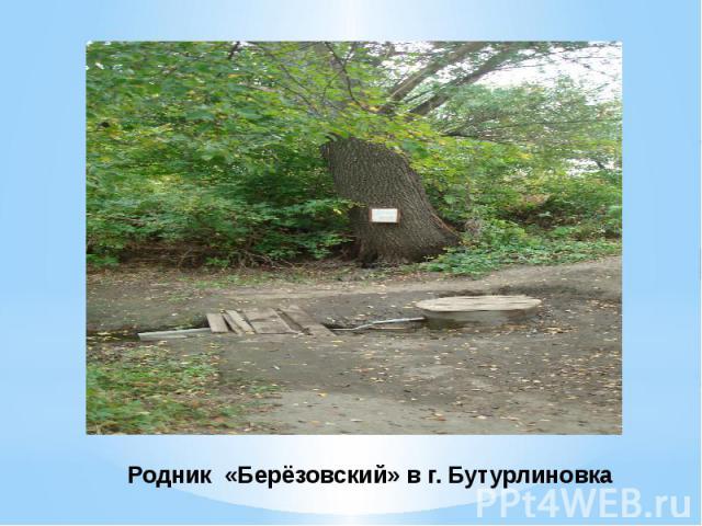 Родник «Берёзовский» в г. Бутурлиновка