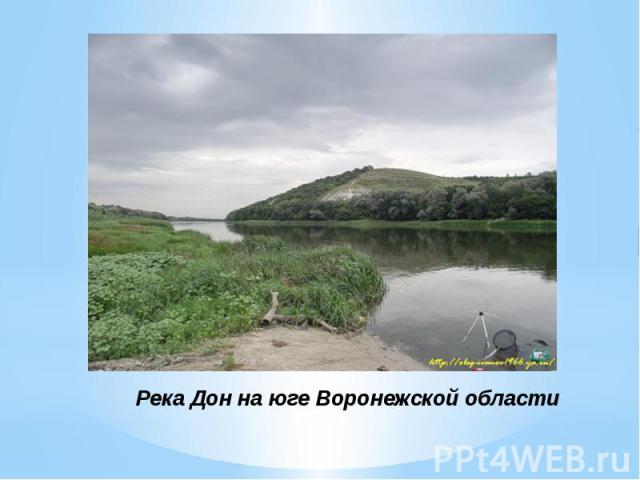 Река Дон на юге Воронежской области