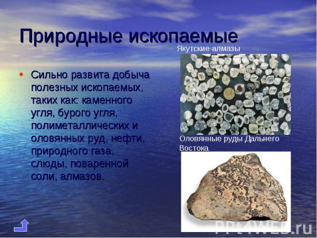 Сильно развита добыча полезных ископаемых, таких как: каменного угля, бурого угля, полиметаллических и оловянных руд, нефти, природного газа, слюды, поваренной соли, алмазов. Сильно развита добыча полезных ископаемых, таких как: каменного угля, буро…