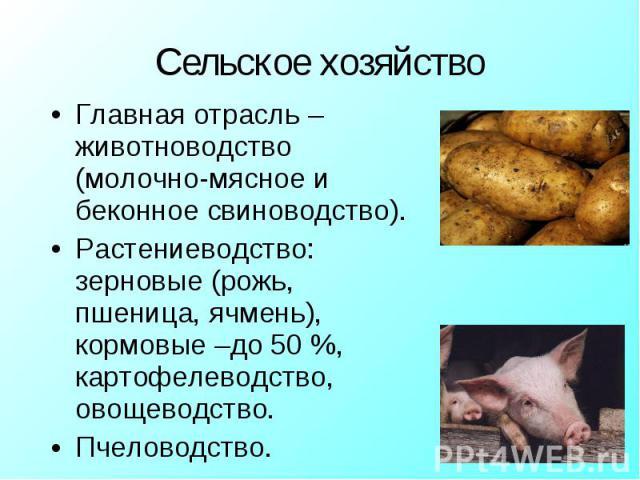 Главная отрасль – животноводство (молочно-мясное и беконное свиноводство). Главная отрасль – животноводство (молочно-мясное и беконное свиноводство). Растениеводство: зерновые (рожь, пшеница, ячмень), кормовые –до 50 %, картофелеводство, овощеводств…