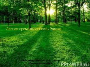Лесная промышленность России Учитель географии МАОУ СОШ №6 г. Тобольска Шевелева