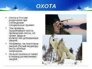 ОХОТА Охота в России разрешена при соблюдении специальных правил. Эти правила ог