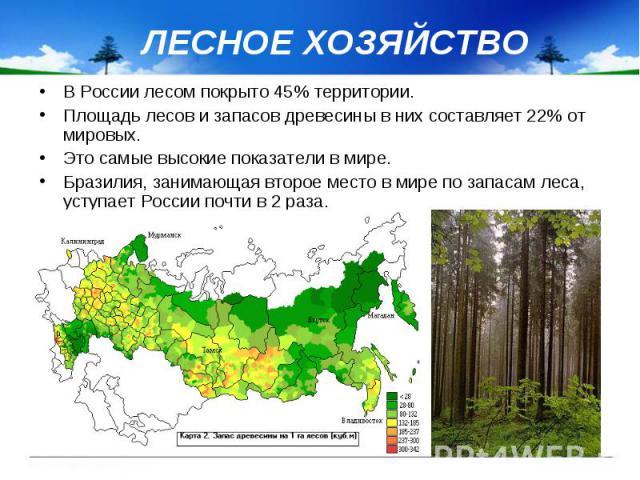 ЛЕСНОЕ ХОЗЯЙСТВО В России лесом покрыто 45% территории. Площадь лесов и запасов древесины в них составляет 22% от мировых. Это самые высокие показатели в мире. Бразилия, занимающая второе место в мире по запасам леса, уступает России почти в 2 раза.