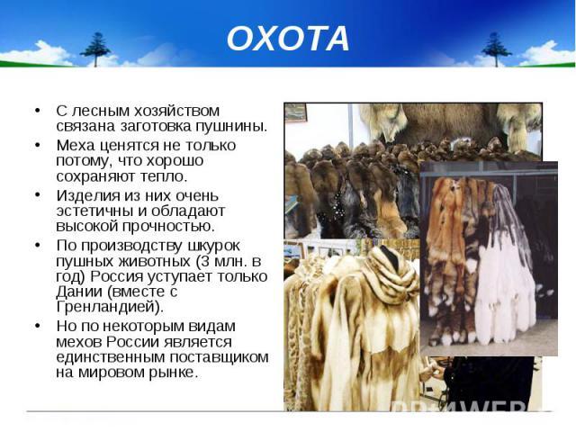 ОХОТА С лесным хозяйством связана заготовка пушнины. Меха ценятся не только потому, что хорошо сохраняют тепло. Изделия из них очень эстетичны и обладают высокой прочностью. По производству шкурок пушных животных (3 млн. в год) Россия уступает тольк…