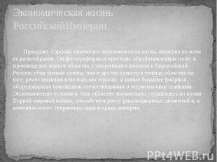 Экономическая жизнь РоссийскойИмперии. Прокудин–Горский запечатлел экономическую