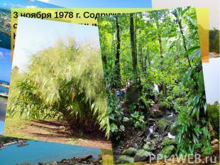 3 ноября 1978 г. Содружество Доминики стало независимым от Соединённого Королевс