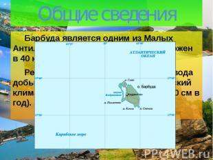 Общие сведения Барбуда является одним из Малых Антильских островов. Остров распо