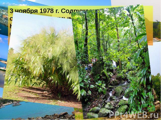 3 ноября 1978 г. Содружество Доминики стало независимым от Соединённого Королевства, которое с 1967 года формально управляла страной. 3 ноября 1978 г. Содружество Доминики стало независимым от Соединённого Королевства, которое с 1967 года формально …