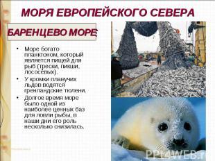 МОРЯ ЕВРОПЕЙСКОГО СЕВЕРА Море богато планктоном, который является пищей для рыб