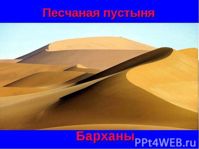 Песчаная пустыня Барханы