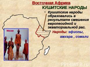 Кушитские народы образовались в результате смешения европеоидной и экваториально