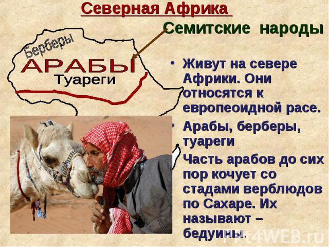 Живут на севере Африки. Они относятся к европеоидной расе. Живут на севере Африки. Они относятся к европеоидной расе. Арабы, берберы, туареги Часть арабов до сих пор кочует со стадами верблюдов по Сахаре. Их называют – бедуины.