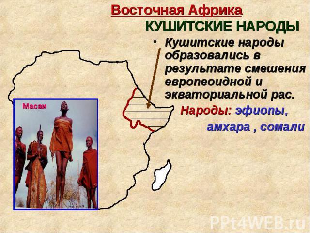 Кушитские народы образовались в результате смешения европеоидной и экваториальной рас. Кушитские народы образовались в результате смешения европеоидной и экваториальной рас. Народы: эфиопы, амхара , сомали