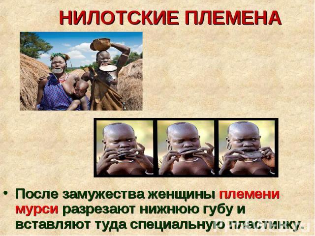 После замужества женщины племени мурси разрезают нижнюю губу и вставляют туда специальную пластинку. После замужества женщины племени мурси разрезают нижнюю губу и вставляют туда специальную пластинку.